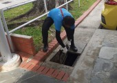 Oiling in drains